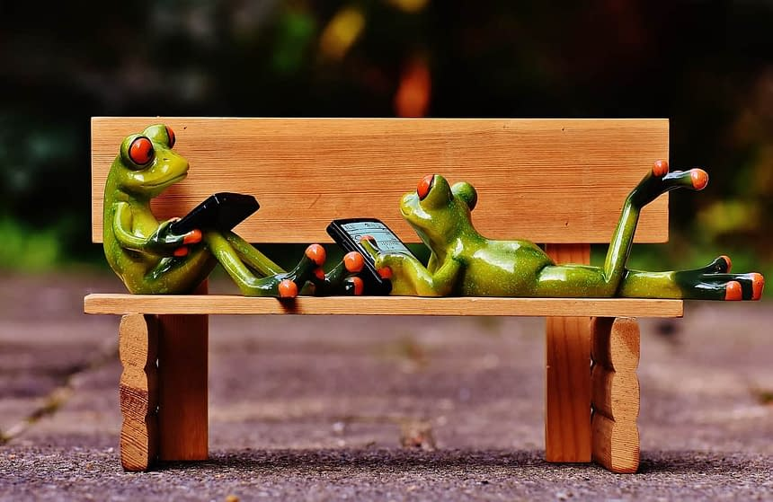 frogs-1642875_1280